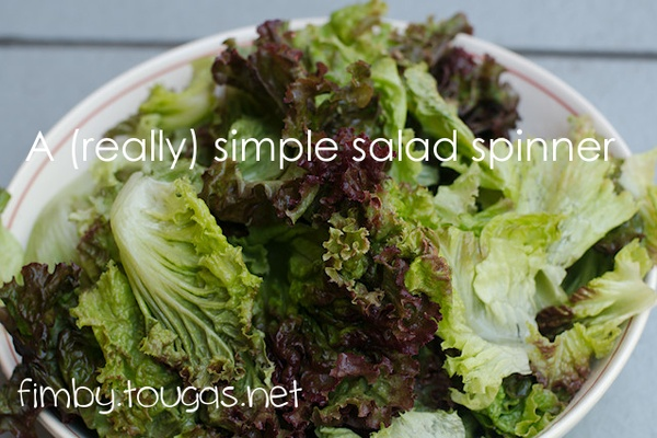 A Simple Salad Spinner
