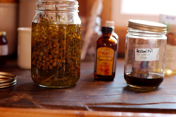 (the ultimate) Healthy Homemaker Series ~ herbs and essential oils