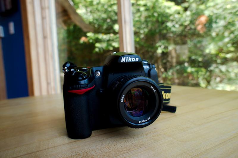 Nikon D300 camera for sale | Renee Tougas