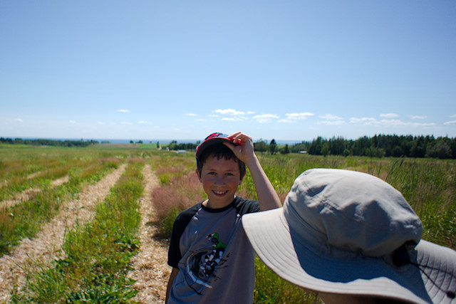 boy in berry field