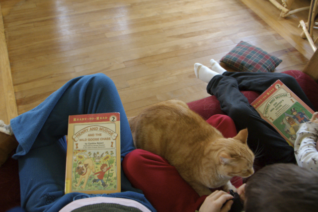 Henry and Mudge on the couch: we love this book series