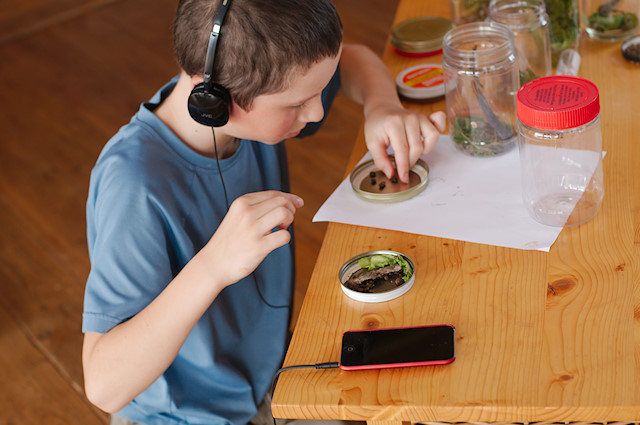 Audio Books Are Highly Recommended For Dyslexic Learners Beyond The Usual Finds At Your